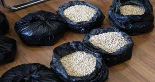 الجمارك ضبطت 250 الف حبة كابتاغون كانت مهربة عبر المرفأ الى نيجيريا